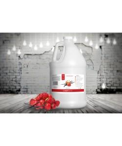 Suntana Rapid Tan (EXPRESS)(3,8 литра)